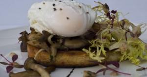 Egg-on-Mushroom1-950x500